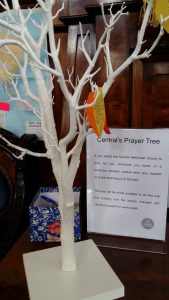Central's prayer tree